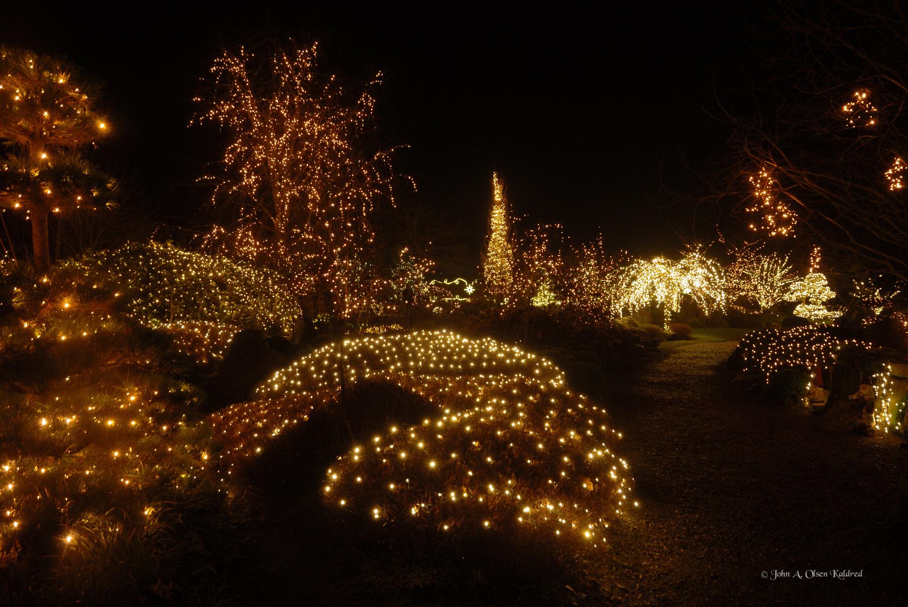 Jul i Birkegårdens Haver_01